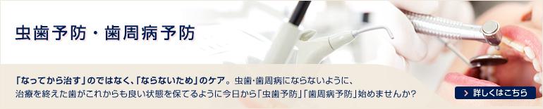 虫歯予防 歯周病予防